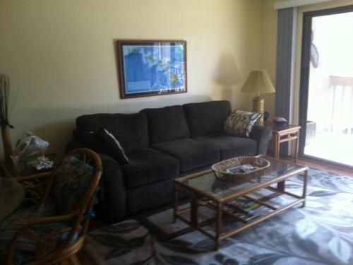 livingroom with new furniture
